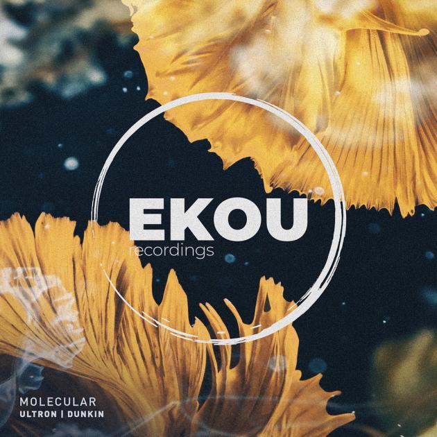 Molecular - Ultron / Dunkin [Ekou Recordings]