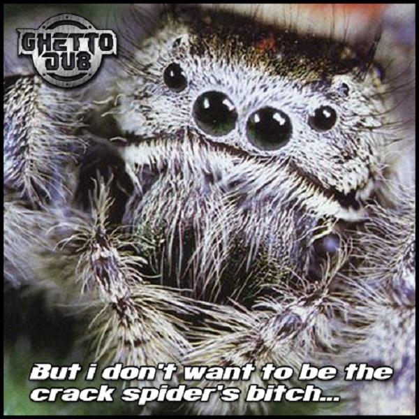 Vinyl Junkie & Sanxion - Crack Spiders FREE TUNE [Ghetto Dub]