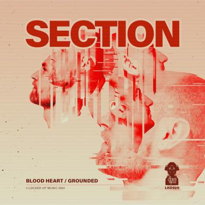 Section - Blood Heart / Grounded