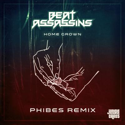 Beat Assassins - Homegrown (Phibes remix)