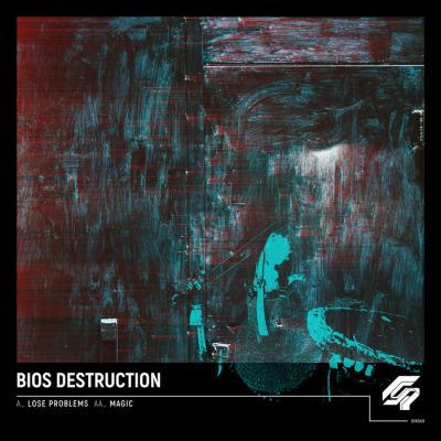 Bios Destruction - Lose Problems