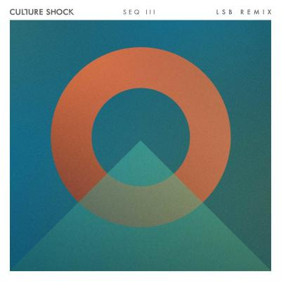 Culture Shock - There For You ( LSB Remix )