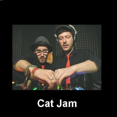Cat Jam Free Download