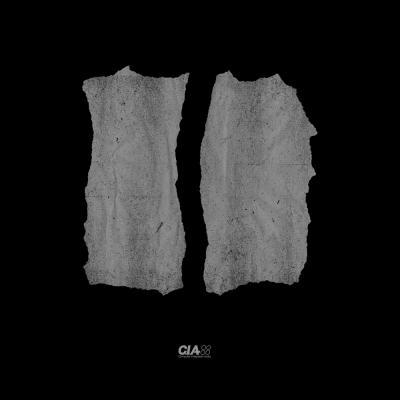 Total Science - Fallen Angel (L-Side Remix) / L-Side Untouchable