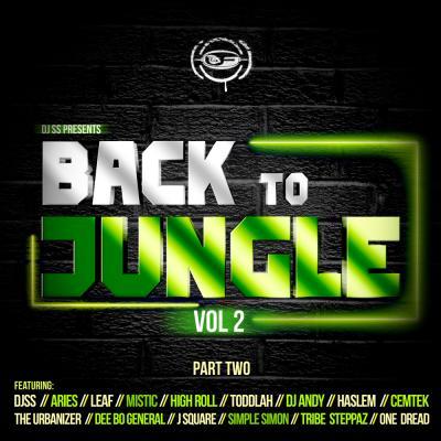 Djss Presents Back To Jungle Vol 2 L.P Part. 2