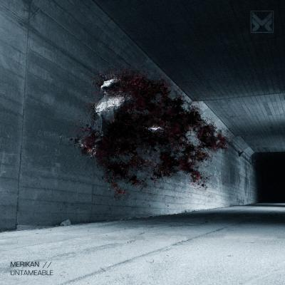 Merikan - Untameable & Counter-Insurgency [Methlab Recordings]