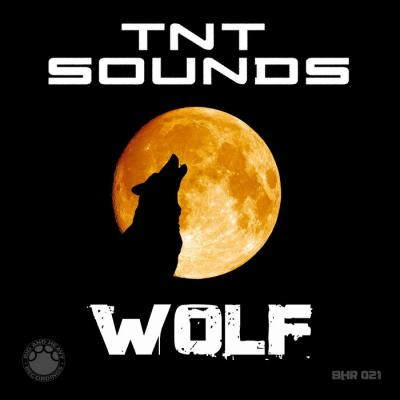 TNT SOUNDS - Wolf