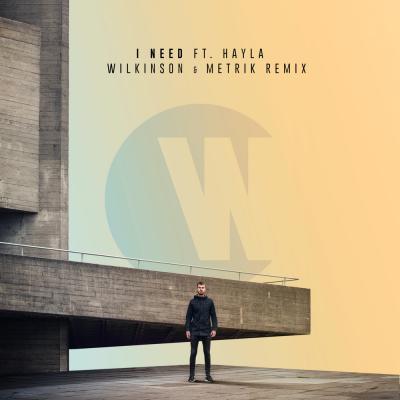 Wilkinson - I Need Ft. Hayla (Wilkinson & Metrik Remix)