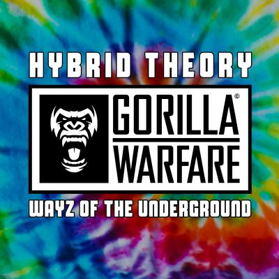 Hybrid Theory - Wayz Of The Underground