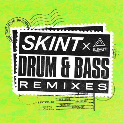 Various Artists - Skint Records Drum And Bass Remixes