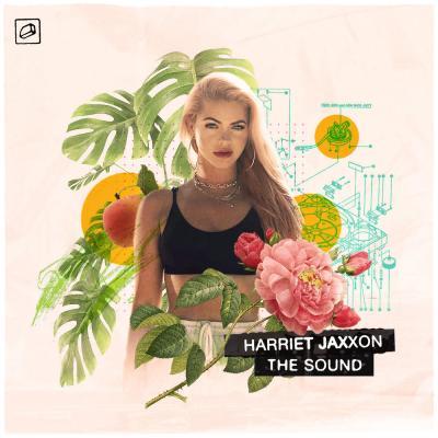 Harriet Jaxxon: The Sound