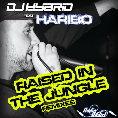 DJ Hybrid Ft. Haribo - Raised In The Jungle Remixes